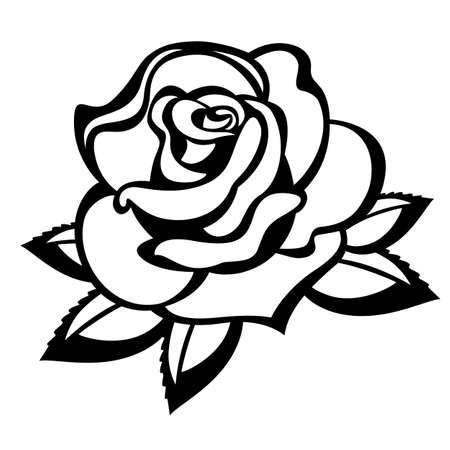 rosebud: Rose on a white background. Black and white