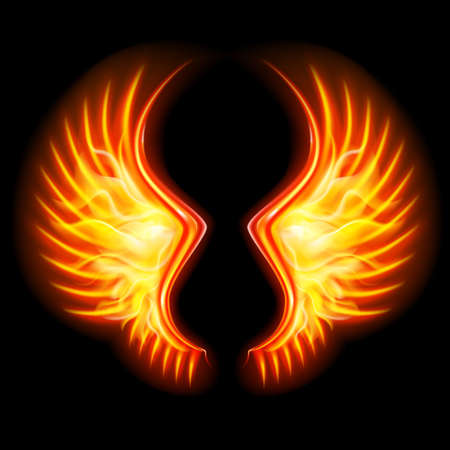 Fire Wings on the Black background. Mesh.This file contains transparency.