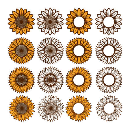 Set of sunflowers for design. Ilustracja