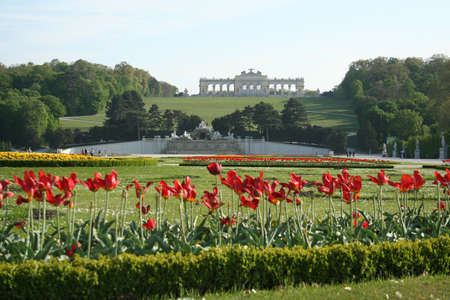 the gloriette: Neptune fountain and Gloriette in Schoenbrunn park seen through flowers