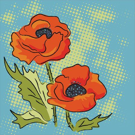 Elegance illustration with red poppies isolated on blue background  Color design elements  Vector