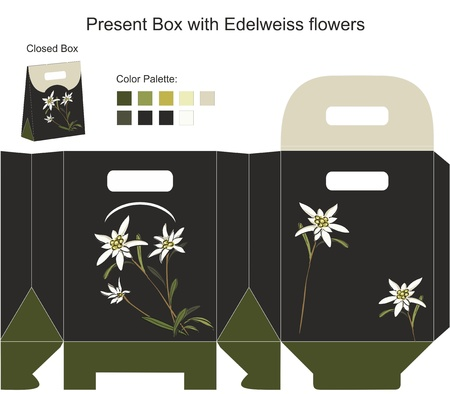 Present box with edelweiss flowers Vector