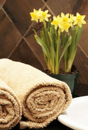 Modern bathroom inter with rolled up towels on the counter and daffodils in the background Stock Photo - 3672801