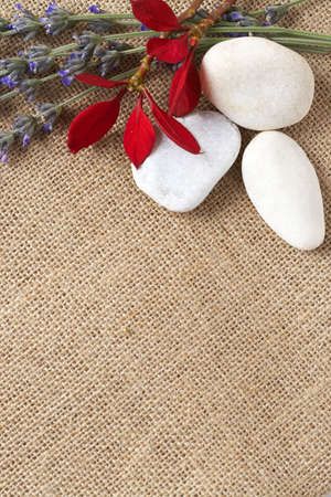 Beautiful red flowers and lavender with white pebbles on mesh material background with copy space photo