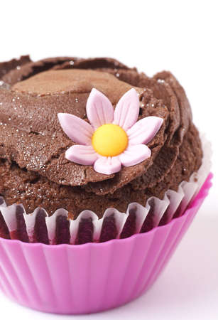 dainty: Miniature chocolate cupcake with icing and pink flower on white background. Macro shot. Shallow depth of field
