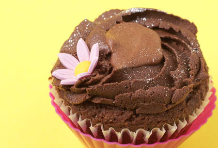 dainty: Miniature chocolate cupcake with icing and flower on yellow background