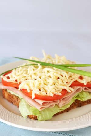 queso rallado: Sabrosa ahumado jam�n, tomate y mozzarella s�ndwich de queso de pan integral Foto de archivo