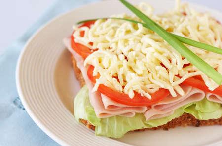 Tasty smoked ham, tomato and mozzarella cheese sandwich on wholewheat bread photo