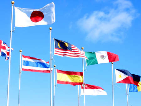 Flags of many countries on the background of bright blue sky at the site of international corporation