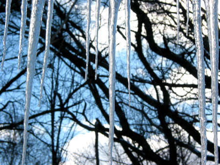 Big icicles hanging from the roof, trees and blue sky in the background Stock Photo - 353221