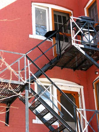 Fire escape on red brick building; black cat on top window photo