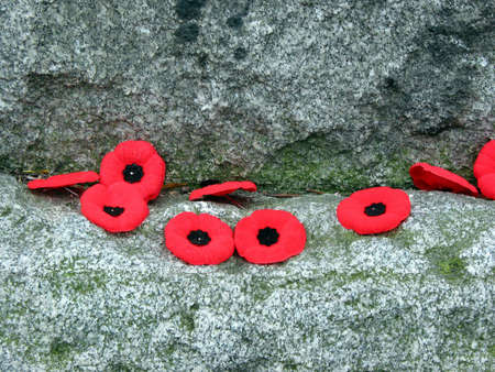 Poppies on the granite war monument on Rememberance day