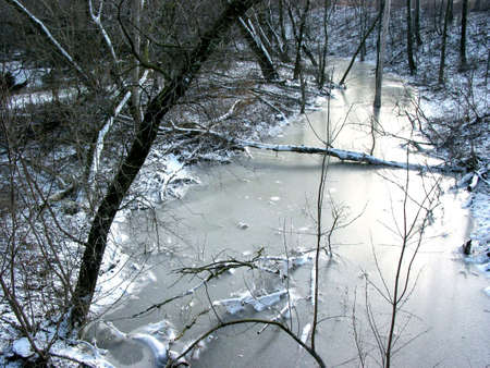 Frozen river in winter forest Stock Photo - 357321