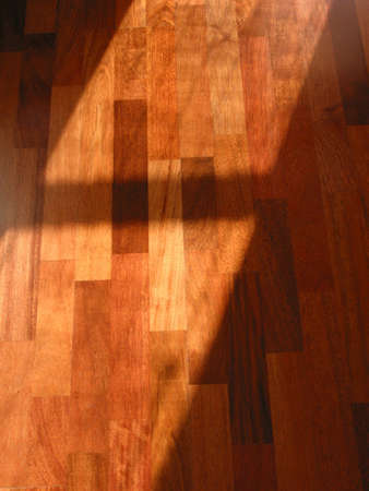 across: Warm brown brazilian cherry hardwood floor with sun beam across