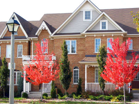 townhouses: Modern townhouses with bright red autumn trees