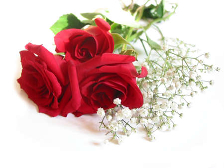Bouquet of three red roses on white background
