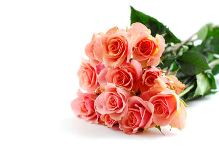 Bouquet of pink roses on white background Stock Photo - 360594