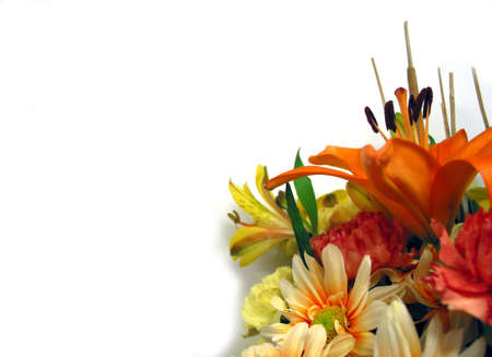 Corner flower bouquet on white background with space for text