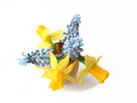 Easter arrangement: Spring flowers in egg shell on white background photo