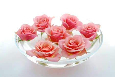 Pink rose flowers floating in a bowl with water on white background photo