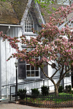 Quaint Victorian house in the spring photo