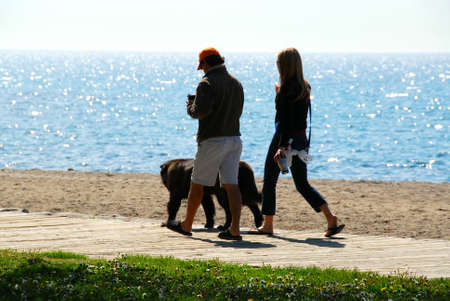 Couple talking a walk with their dog in the morning at beach