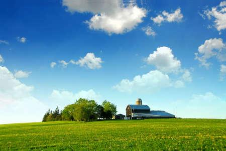 wśród: Farmhouse i stodoła wśród zielonych pól
