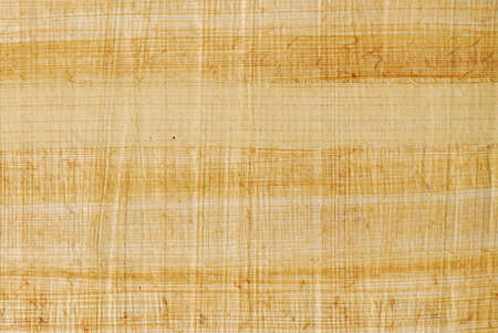 Natural papyrus background photo