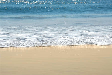 ocean waves: Ocean shore with sandy beach and advancing wave