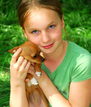 preteen girl: Smiling young girl holding a chihuahua puppy Stock Photo