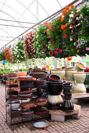 hanging flowers: Flowers and ceramic pots for sale in a greenhouse