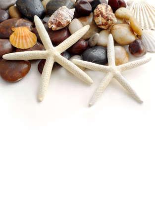 Starfish, pebbles and seashells on white background photo