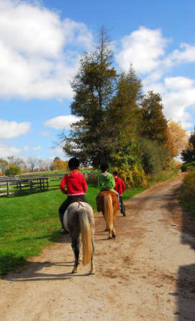 Children riding ponies on a countryside road