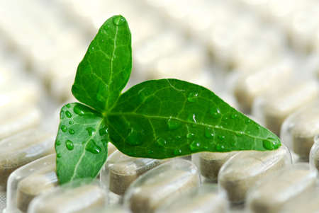 naturopath: Herbal supplement pills close up with fresh green leaf