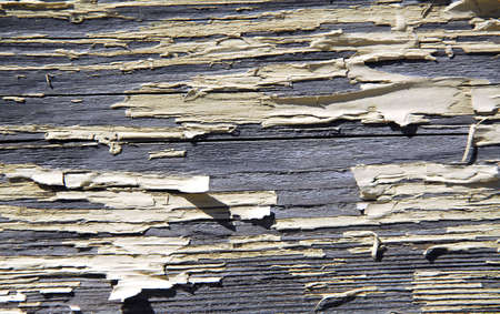 Background of old wood with peeling paint photo