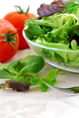 Fresh  greens salad and tomatoes on white background photo