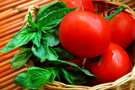 Fresh tomatoes and green basil in a basket