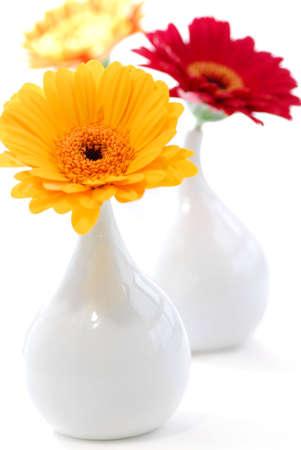 Drie vazen met gerbera bloemen geïsoleerd op witte achtergrond als interieur design element
