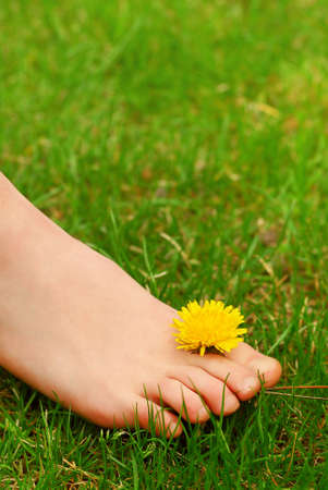 Closeup on young girls bare foot in green grass with a dandelion Imagens