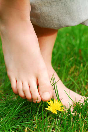 Closeup on childs bare feet in green grass photo