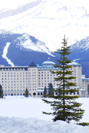 Chateau Lake Louise in Canadian Rocky mountains in winter photo