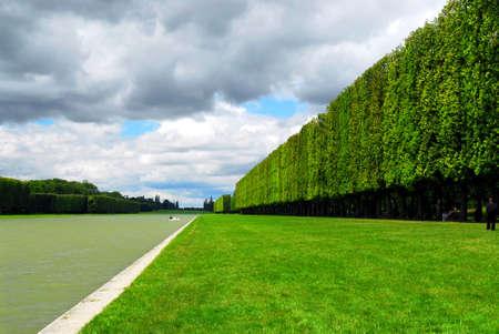 sculpted: Lijn van gebeeldhouwde bomen langs de vijver in Vesailles tuinen, Frankrijk.