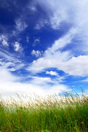 Natural background of bright blue sky and green grass