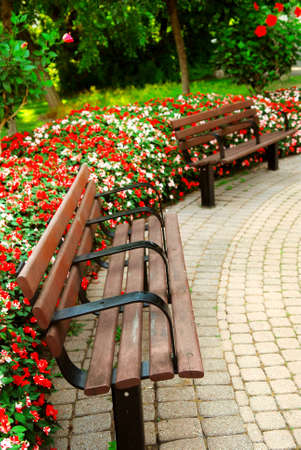 late summer: Garden with paved path, benches and blooming flowers in late summer
