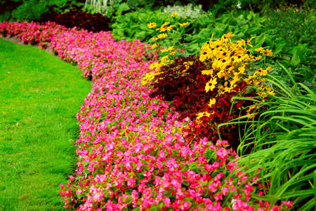 late summer: Blooming flowers in late summer garden flowerbeds Stock Photo