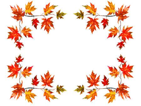 フレームの背景と赤い秋のメープル葉します。 写真素材 - 1638070