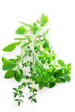 sprigs: Bunch of fresh assorted herbs on white background (basil, thyme, oregano, rosemary) Stock Photo