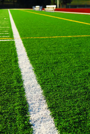 racetrack: Green sports field with artificial grass and racetrack