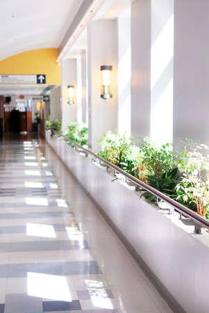 corridoi: Corridoio di ospedale che porta a una reception Archivio Fotografico