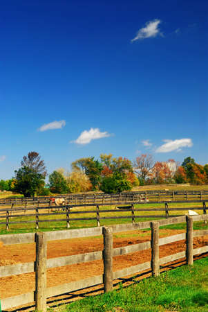 Rural farm landscape in early fall in Ontario, Canada photo
